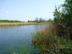 Река Громоклея