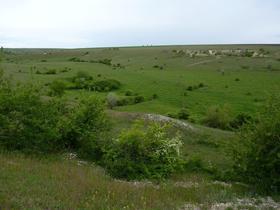 Окрестности Новогригорьевки (Чубовки)