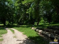Парк в усадьбе